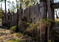 Old Fence, Lake Broadwater
