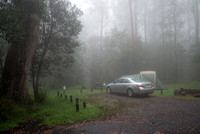 Misty campground, New England National Park