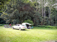 Gloucester River Campground, Barringtop Tops National Park