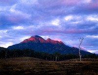 Mt Barney National Park