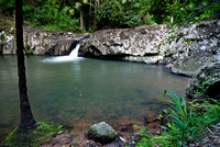 Warringa Pool, Springbrook National Park