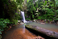 Curtis Falls, Tamborine Mountain