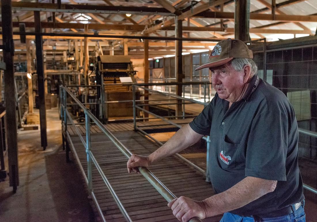 Tour Guide, Blackall Wool Scour