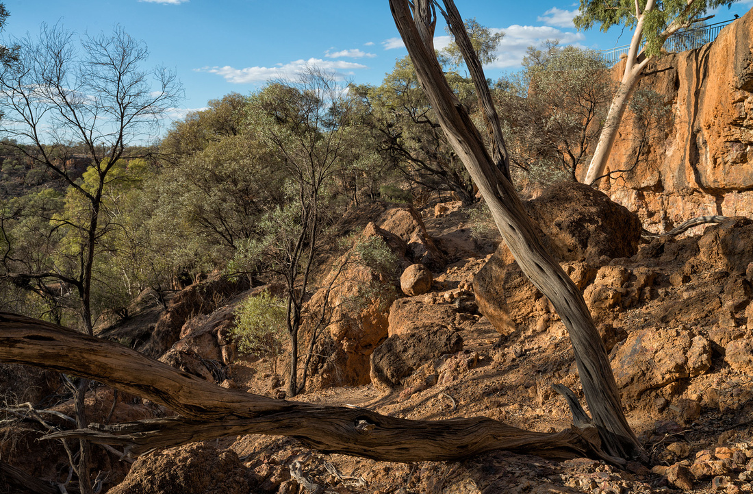 Deep Gully Walk, Age of Dinosaurs Museum, Winton