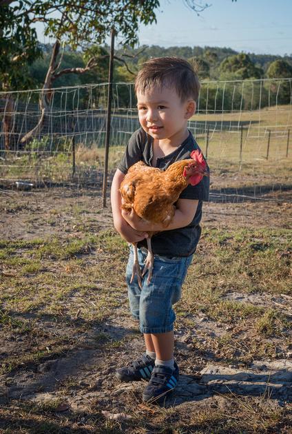 Drew Holding a Chicken