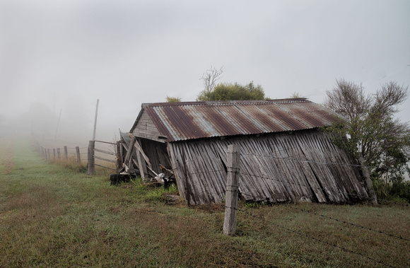 Collapsing shed near Mt Barney in mist
