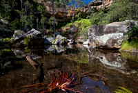 Rainbow Falls, Blackdown Tableland
