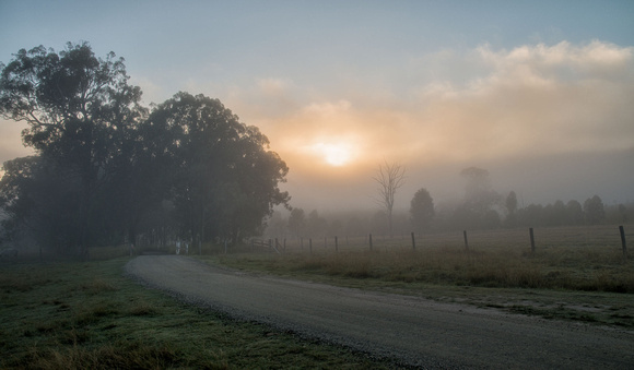 Srun breaking through mist near Mt Barney